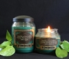 Cilantro Citrus Herb Reflective Light Scentiments Candle