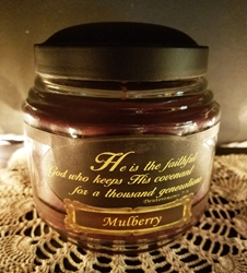 Mulberry Reflective Light Candle